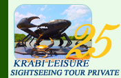 Krabi Leisure Sightseeing Tour Private