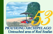 Prathong Archipelago Untouch Area of Red Sea Fan